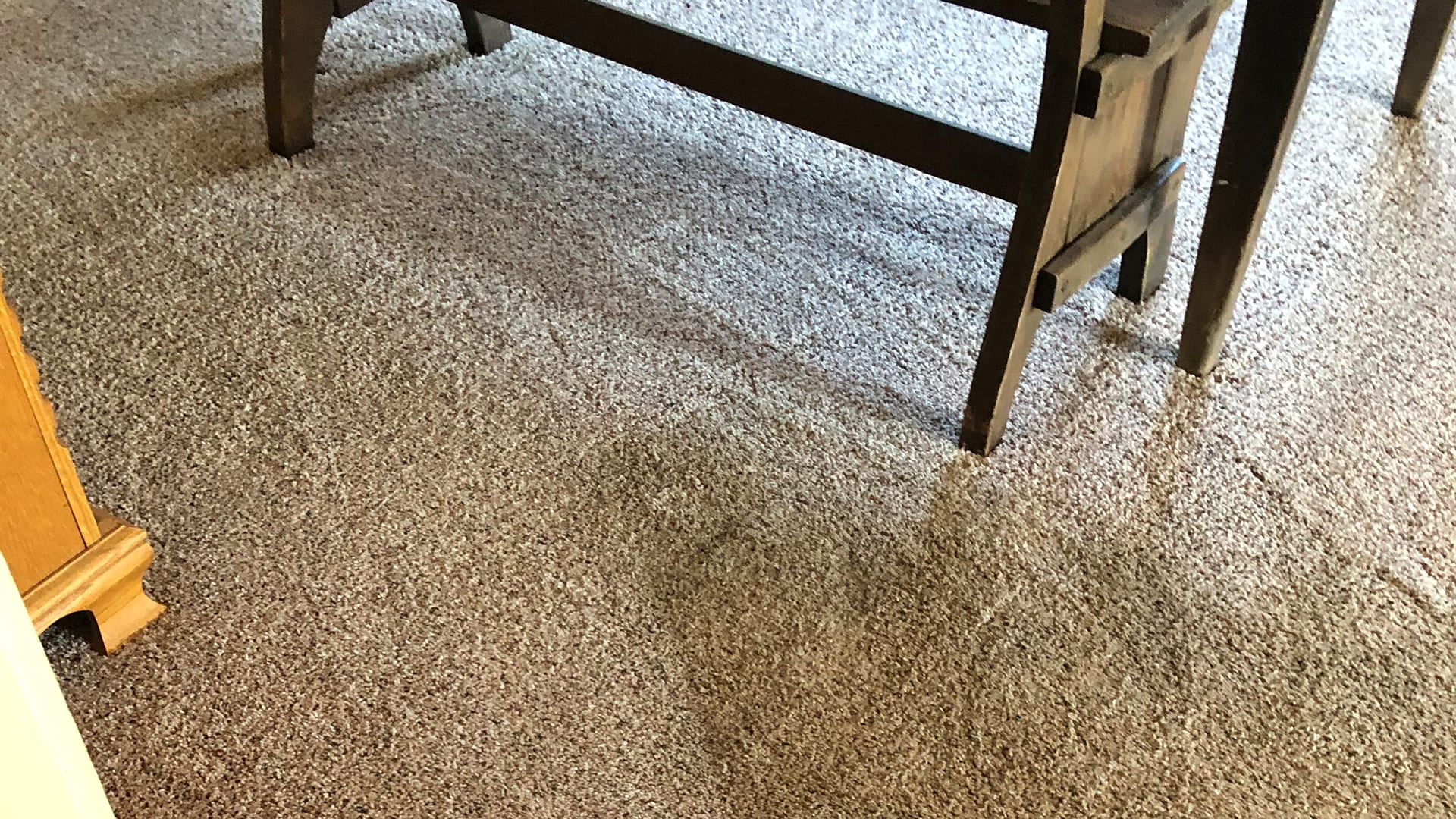 Cleaning carpet at commercial office